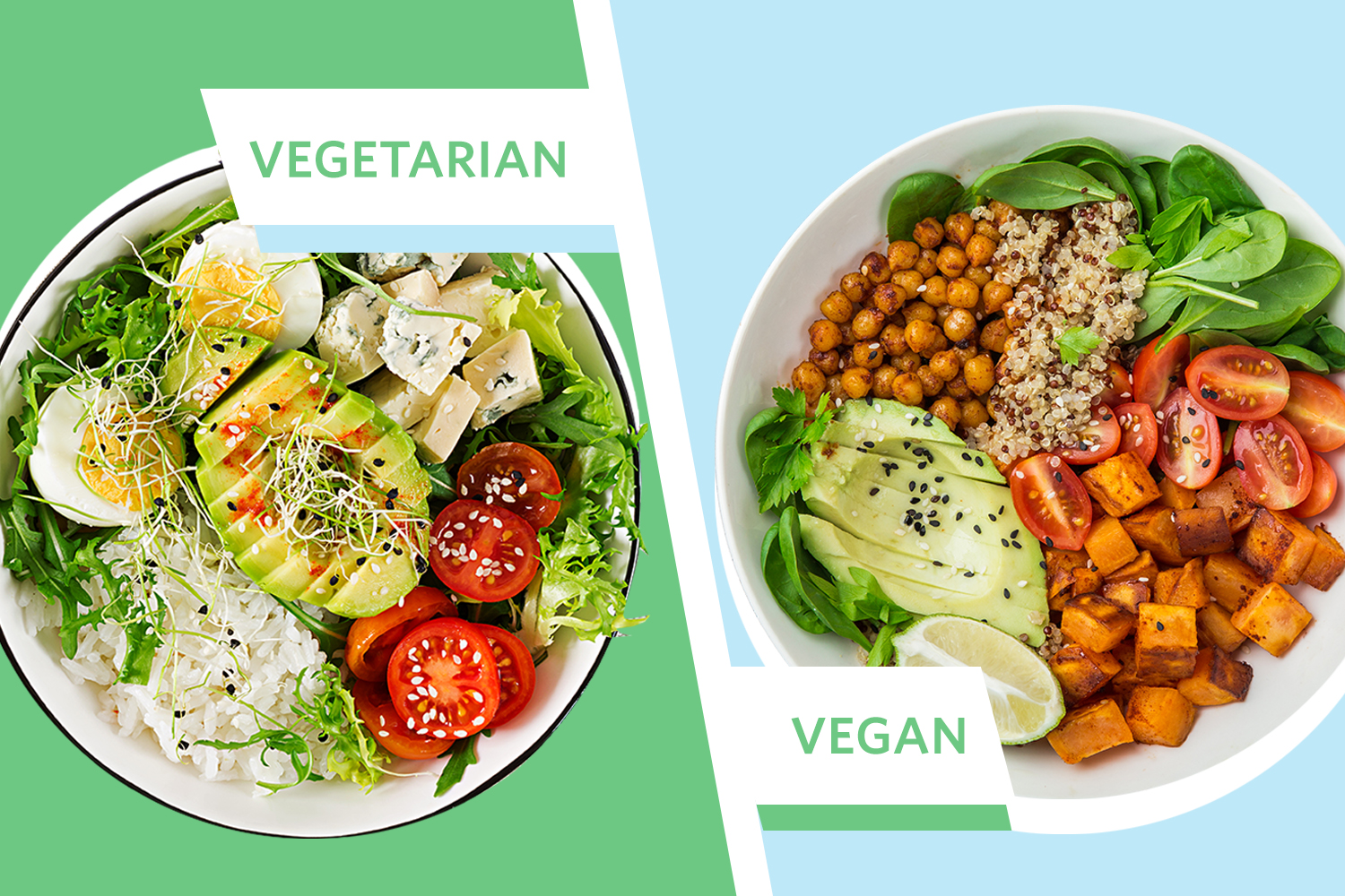 Difference between Vegan vs. Plant-Based and Vegetarian